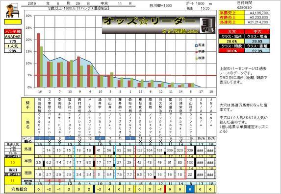 chukyou11.jpg